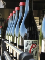 sineann-bottles